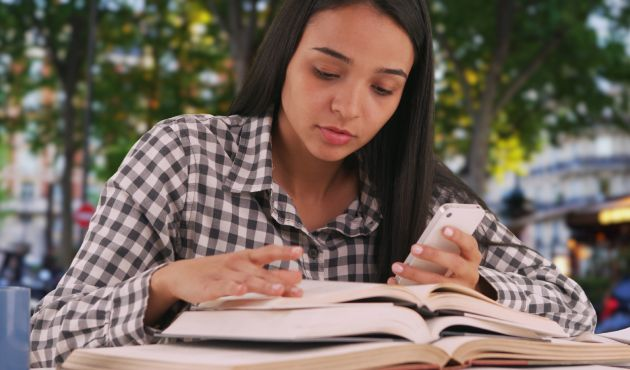 Curso de francés y preparación universitaria